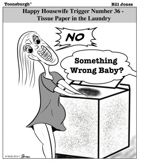 Toonsburgh® cartoon of a housewife getting angry as her husband forgot to remove tissue paper from his pants before the laundry.
